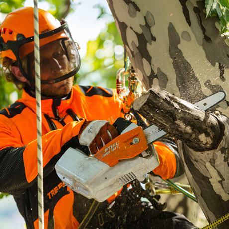 Stihl Battery Chainsaw MSA 161 T climbing saw
